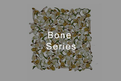 Bone_Series