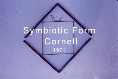 Symbiotic_Form